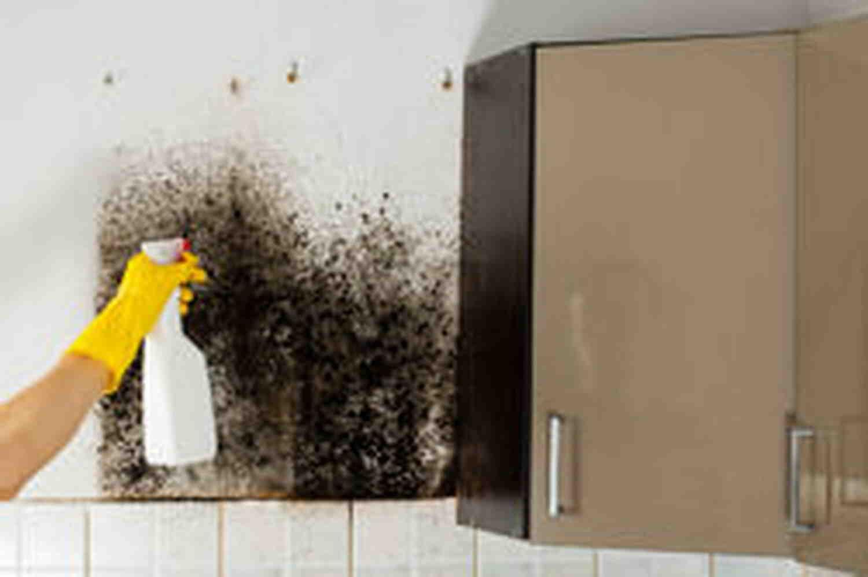 Comment nettoyer une façade avec de la Javel ?